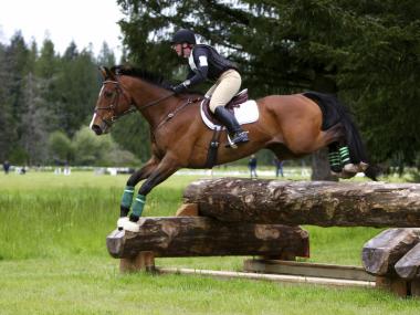 Chiropraktik Pferd, Pferdesport, Vielseitigkeitssport, Springen, Dressur, Sportchiropraktik, Verletzungsprophylaxe